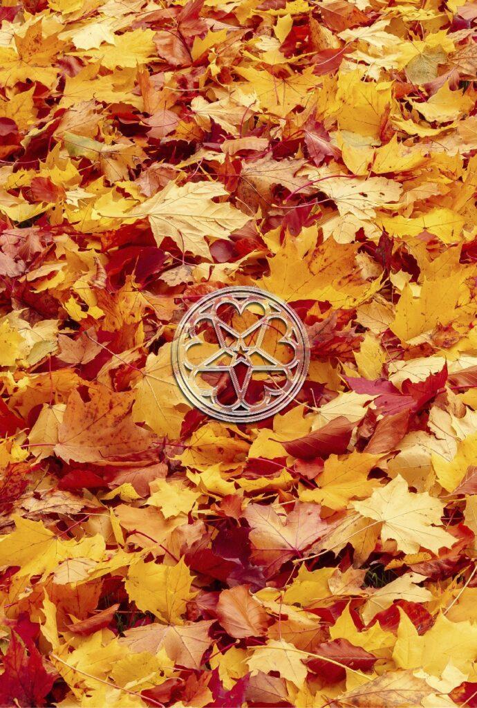 Осень Наших Соборов